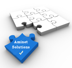 aminet solutions internet